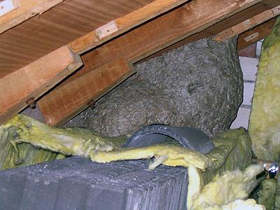 Einsatz in Borken (Westf.) - 30.10.2005